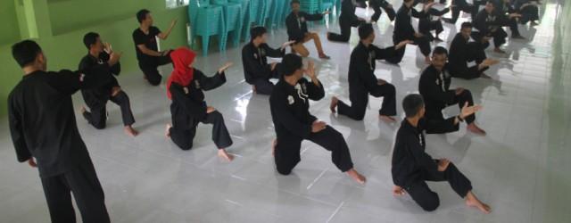 SUNGAILIAT-Persaudaraan Setia Hati Terate (PSHT) Cabang Bangka layak menjadi contoh bagi perguruan pencak silat lainnya se Bangka Belitung (Babel). Sebab, berbagai inovasi dan kreatifitas kini...
